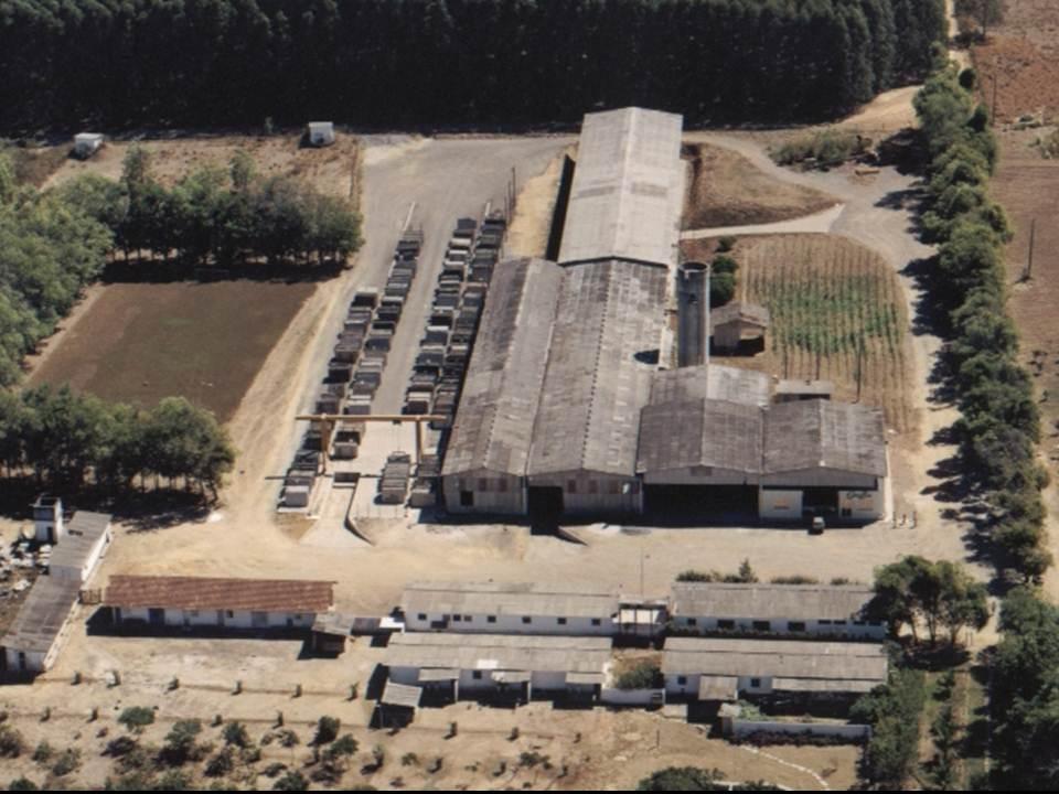 industrial plant zucchi former
